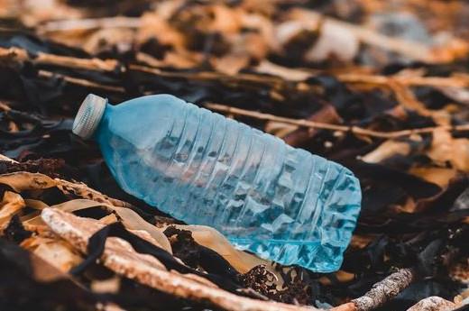 Déchets et impact écologique